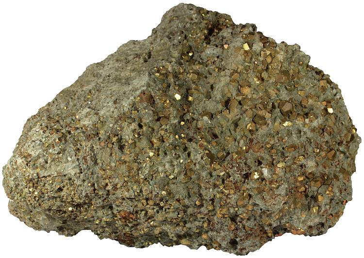 Mudstone with pyrite