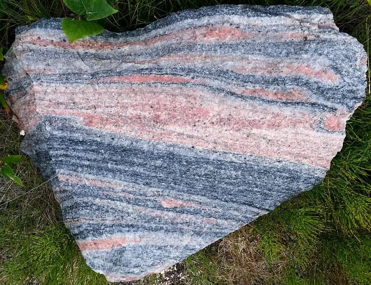 Gneiss - Metamorphic rocks