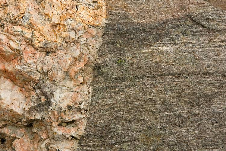 Contact between gneiss and pegmatite