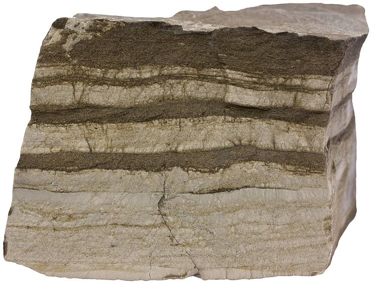Limestone with mudstone layers