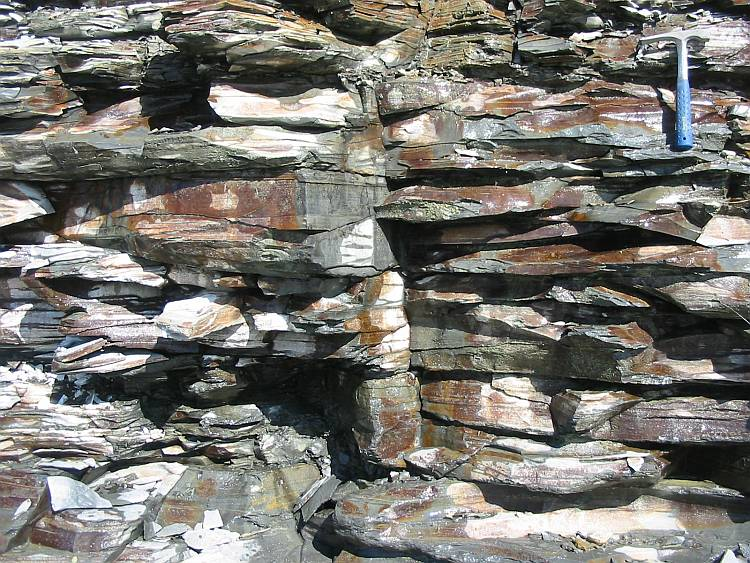 An outcrop of black shale