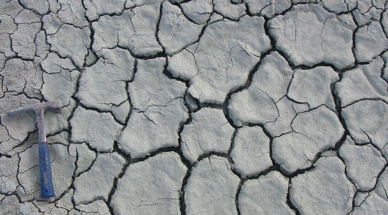 Mud cracks in clay